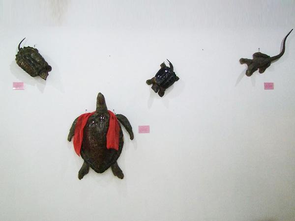 龟组合亚博官网app